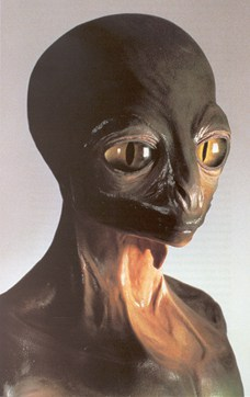 The Nummos/Reptilians would KIDNAP the Virgins and RAPE them to
